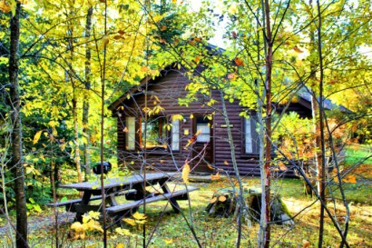 cabin 8 fall4OPT